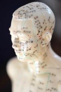 Modell_Akupunkturpuppe
